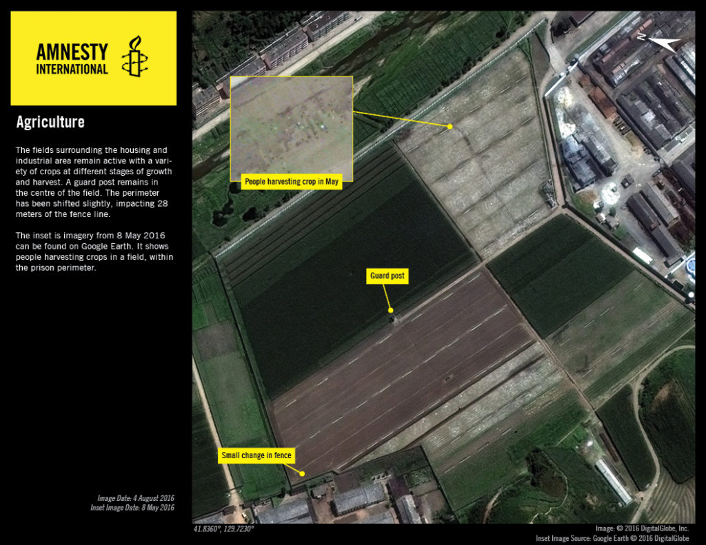 In imagery from May 2016, people are visible harvesting crops from a field within the prison's perimeter which, along with the construction of a mill and probable mine are consistent with the ongoing and expansion of labour-intensive activities in the camp © 2016 DigitalGlobe, Inc.