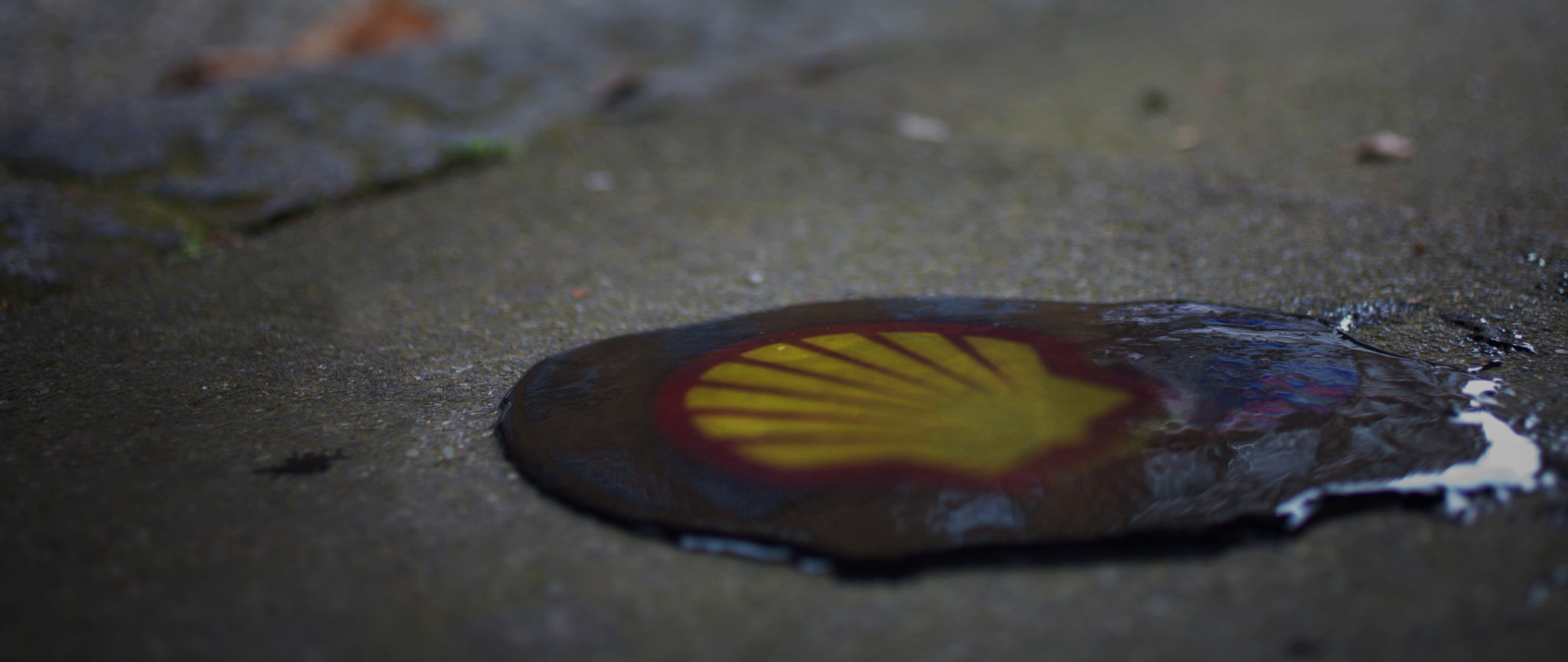 Shell must be investigated for complicity in murder, rape and torture