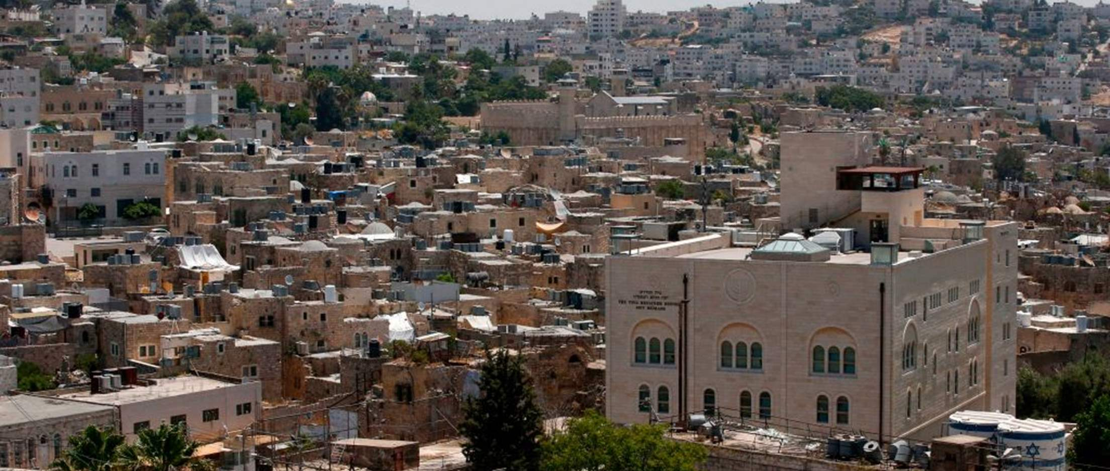 """Israel/OPT: Unlawful """"annexation"""" plan promotes 'law of the jungle' and must be stopped"""